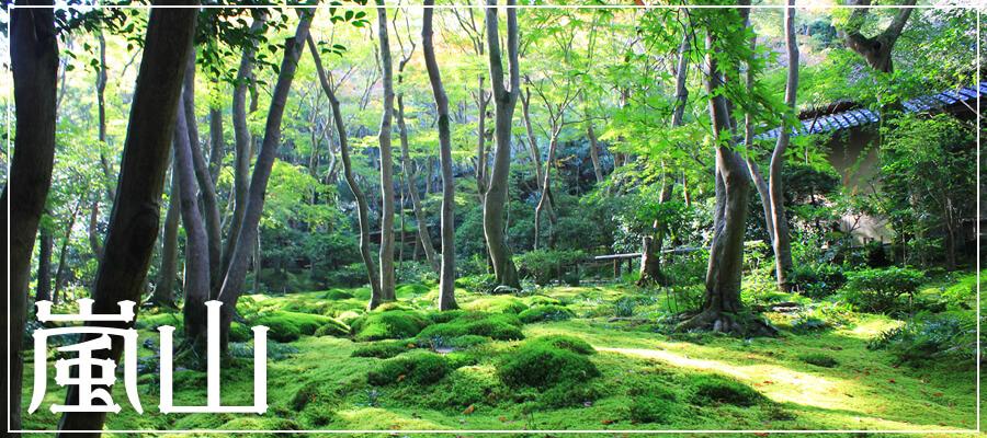 嵐山エリア