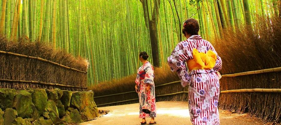 夏の京都観光を満喫しよう!おすすめの4つの楽しみ方