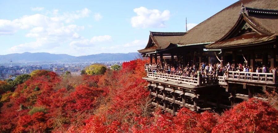 着物姿で清水寺の紅葉を!夜と昼、どちらがおすすめ?