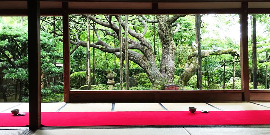 【大原】京都の自然に癒される