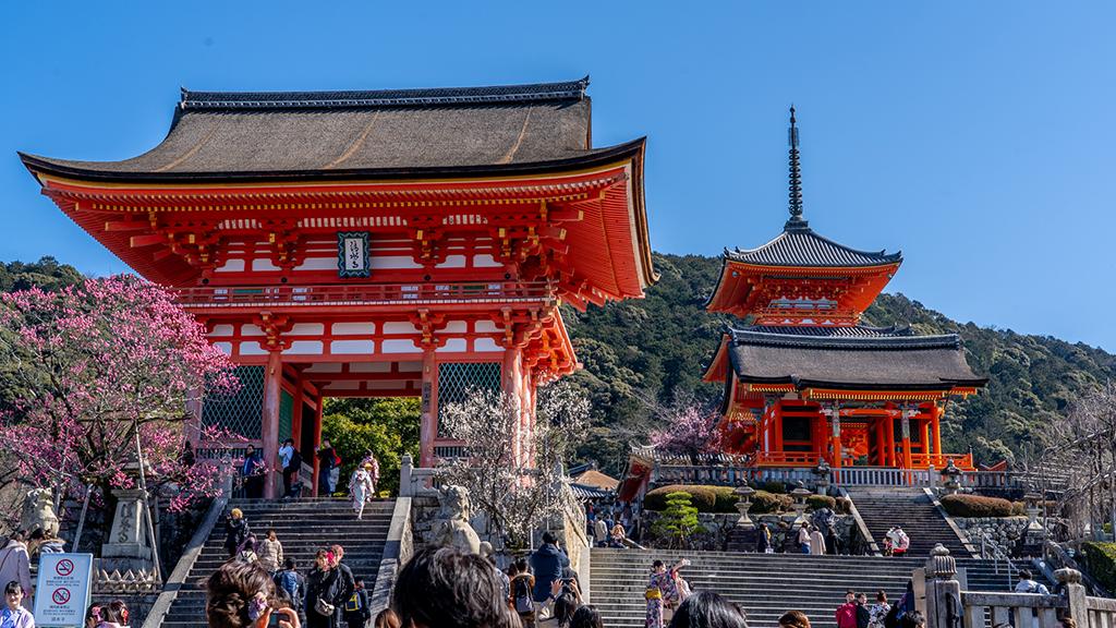 京都で着物レンタルしたら絶対に行きたい!カップルに人気の名所7選
